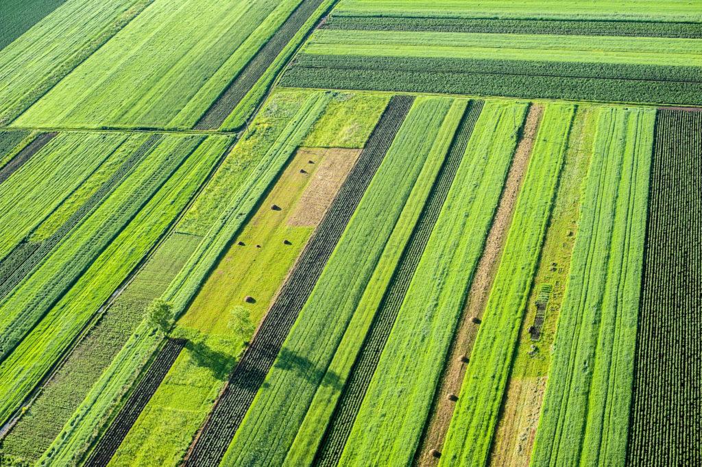 xylem.tech_farming.software